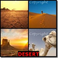 DESERT- 4 Pics 1 Word Answers 3 Letters