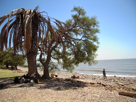 Pe malul Mar del Plata