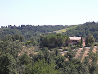 La Selva Lentisco_Montaione_9
