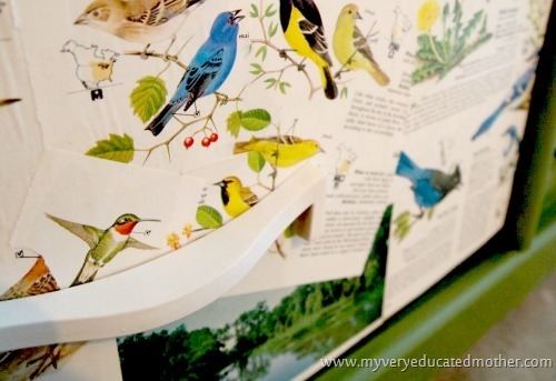 birddrawer  #modpodge #dresser #crafting #furniture