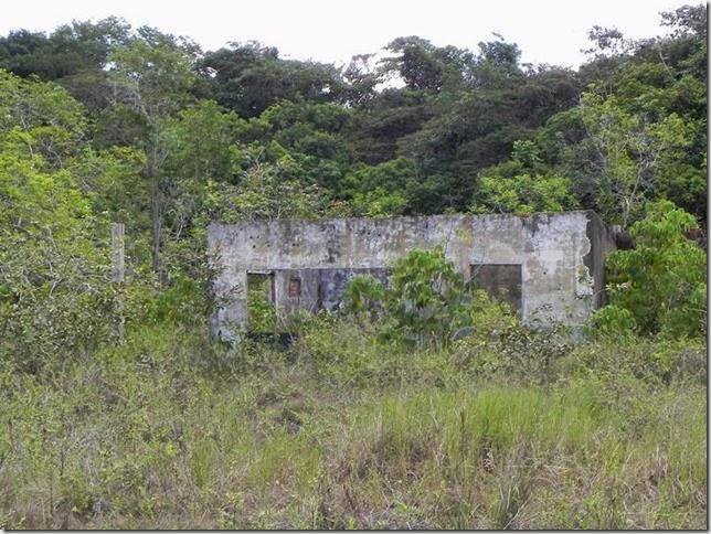 BR-319_Humaita_Manaus_Day_4_DSCN7983