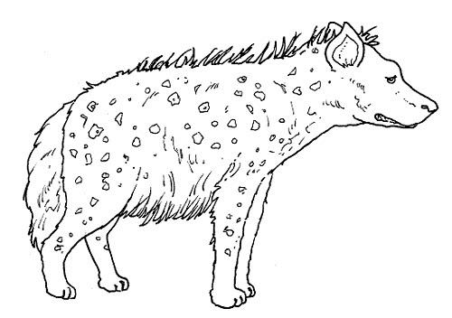 Desenho De Animais Do Zoológico Reunidos Para Colorir: Animales Para Pintar