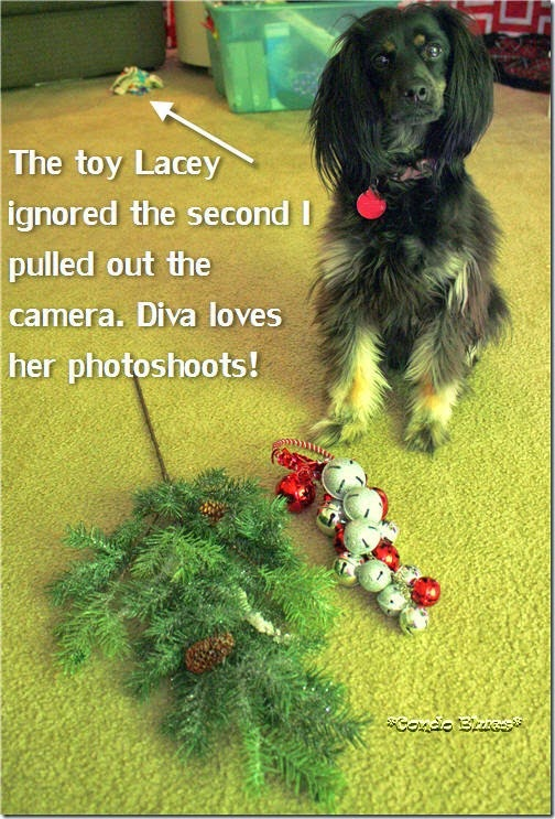 Lacey Christmas Swag Decor 1