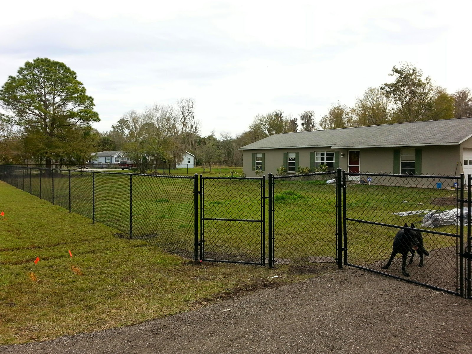 New Tampa Fence Inc Black Chain Link Fence Lutz Fl