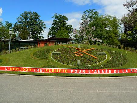 Obiective turistice Elvetia: ceasul floral de la Geneva