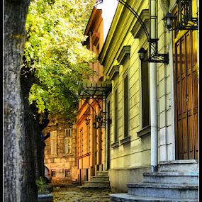 Old Begrade by Aleksandar Filipović - City,  Street & Park  Street Scenes ( stairs, belgrade, street, door, leaf )