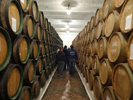 Basarabia - Drumul Vinului: Butoaie la Romanesti