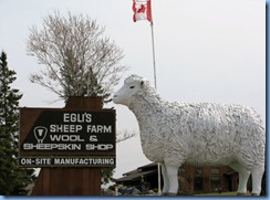 8068a Ontario Trans-Canada Highway 17 - sheep statue