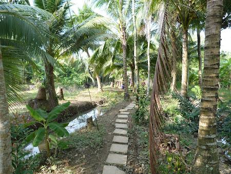 Tur Delta Mekongului: spre livada de fructe exotice