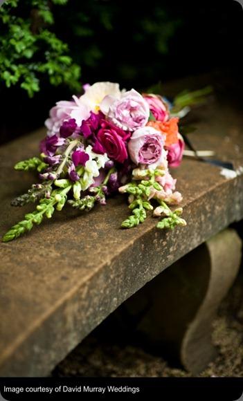 snapdragons slavin_pink_davidmurrayweddings_2010smpshootdmw0028_01  le bonne fleur wordpress
