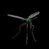 Mosquito Smash