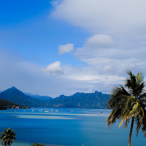 Kaneohe Bay by Anita Elers-Cooper - Landscapes Mountains & Hills ( kaneohe, hawaii, oahu )