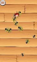 Screenshot of Fly Smasher