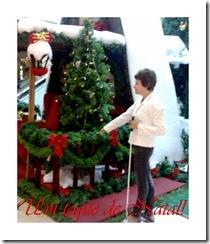 Cartões de Natal da Midiace