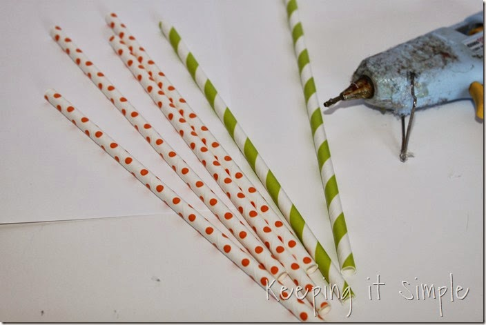 paper-straw-carrot (1)