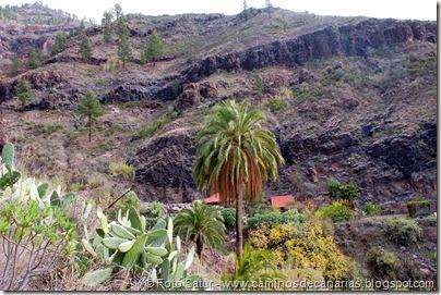 7230 Cruz Grande-La Filipina(Huesa Bermeja)