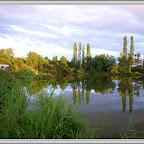 Etang du Marais de Lancin photo #1332