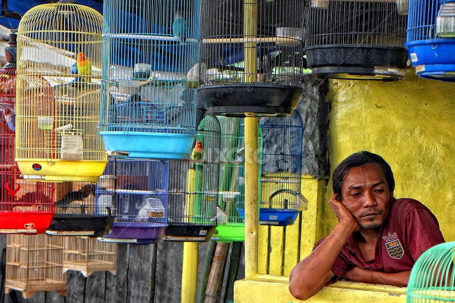 Bird Market by Herry Wibowo - City,  Street & Park  Markets & Shops