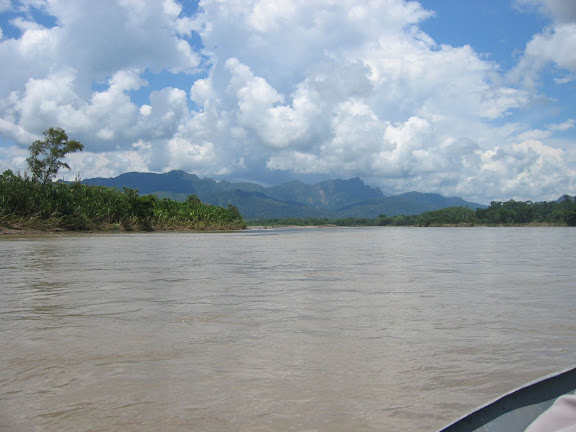 Sur le Rio Beni (alt. : 200 m), au sud de Rurrenabaque (Bolivie), 20 janvier 2004. Photo : H. Bloch
