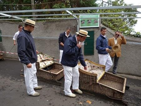 Revelion 2014: La sanius prin Madeira
