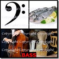 BASS- 4 Pics 1 Word Answers 3 Letters