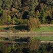 Glendalough Mirror-Caroline O'Reilly.jpg