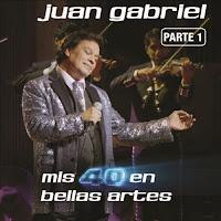 Mis 40 en Bellas Artes: En Vivo Desde Bellas Artes, México 2013, Vol. 1