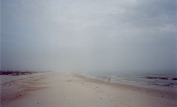 foggy-beach