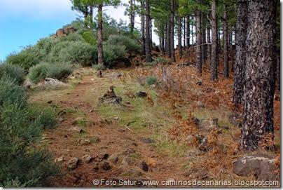 7019 Cruz Tejeda-Artenara-Guardaya(Majada de los Carneros)