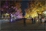 Unter den Linden (DRI)
