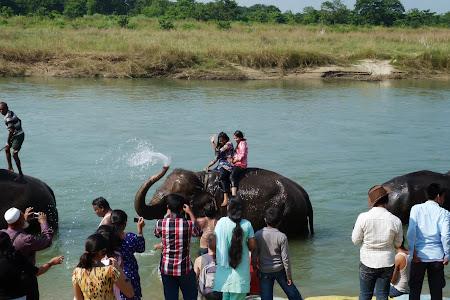 Obiective turistice Nepal:. Elefanti la Chitwan