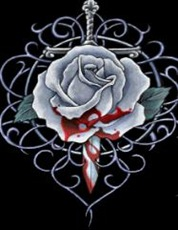 tears-of-blood-rose