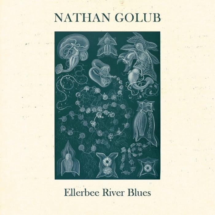 Nathan Golub ~ Ellerbee River Blues