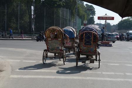 Imagini Nepal: cortegiu de ricse prin Kathmandu