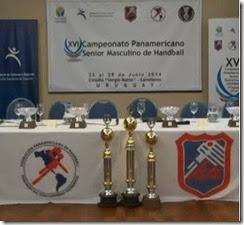 uru2014-trofeos