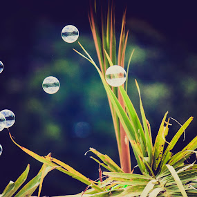 bublle by Nur Saputra - Abstract Water Drops & Splashes