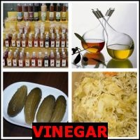 VINEGAR- Whats The Word Answers