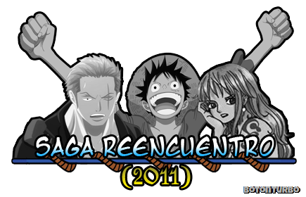 One Piece - Saga Reencuentro