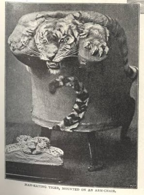tiger chair.jpg