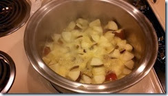 Apples in the hot tub for cinnamon  applesauce