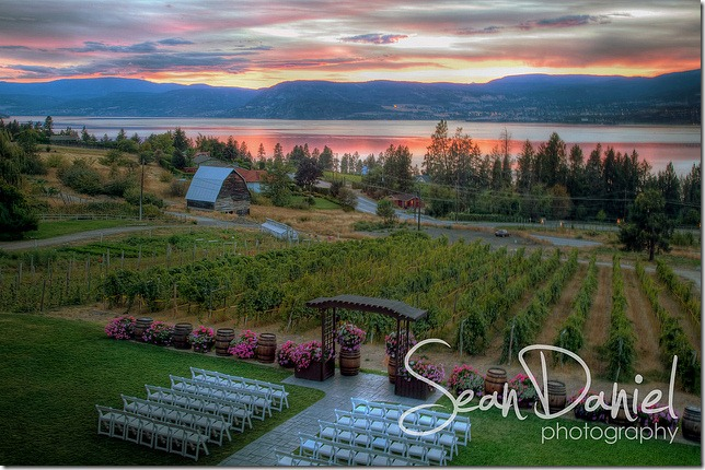 Winery Wedding at Sunset