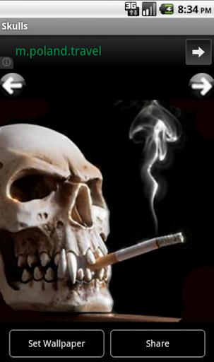頭蓋骨の写真