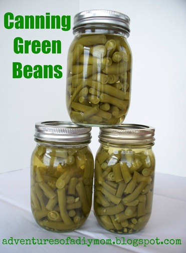 Canning Green Beans (10)