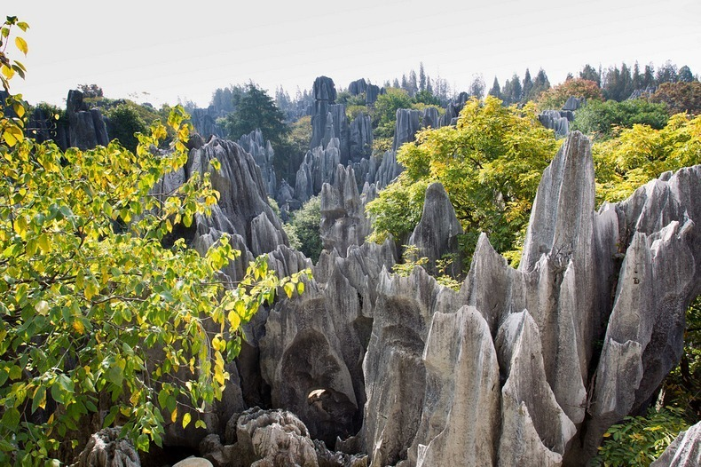 shilin-stone-forest-2