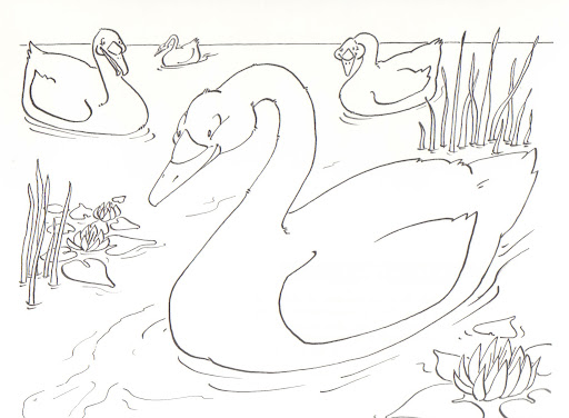 ugly duckling coloring page - photo #46