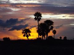 Sunset-2-at-Treasure-Island,-Tampa,-FL