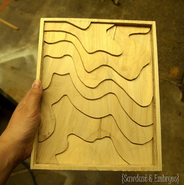 Wooden Topography Artwork {Sawdust and Embryos}