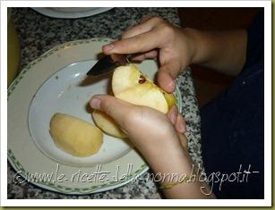 Torta di mele e pere con farina semintegrale e zucchero di canna (7)