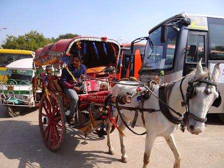 06. Caleasca in Agra.JPG