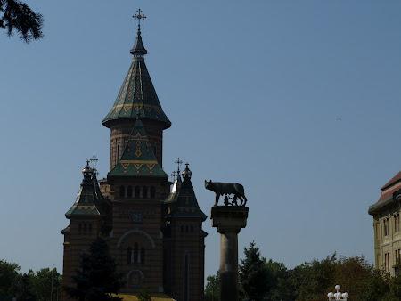 2. lupoaica din Timisoara.JPG